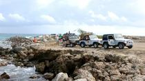 Aruba Full-Day 4x4 Jeep Safari Tour, Aruba, 4WD, ATV & Off-Road Tours