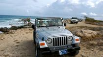 Aruba Half-Day 4x4 Jeep Safari Tour, Aruba, Bus & Minivan Tours