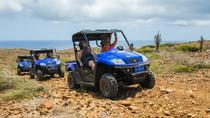 Small-Group Half-Day UTV Adventure Morning Tour in Aruba, Aruba, Horseback Riding