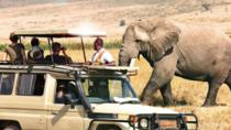 East African Explorer (C) with Sopa, Nairobi, Private Sightseeing Tours