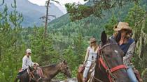 Full Day Guided Horseback Trip