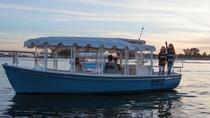 San Diego 3-Hour Electric Boat Rental, San Diego, Boat Rental