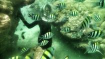 Nusa Dua Sea Walker, Kuta, Other Water Sports