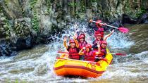Ubud White Water Rafting With Private Return Transport, Kuta, White Water Rafting