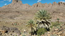 TREK JEBEL SAGHRO MOROCCO 8 DAYS, Ouarzazate, Hiking & Camping
