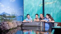 Reef HQ Great Barrier Reef Aquarium General Entry Ticket, Townsville, Attraction Tickets