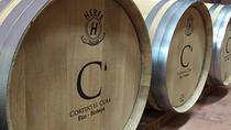 Cortijo El Cura Eco-Bodega guided visit and wine tasting in English, Almeria