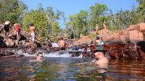 Litchfield and Jumping Crocodiles Full Day Trip from Darwin, Darwin