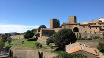 Private Etruscan History Tour from Civitavecchia: Tarquinia and Tuscania, Rome, Ports of Call Tours
