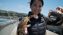 The Art of Crabbing, San Francisco, Fishing Charters & Tours