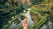 Ubud Day Trip with Private & Friendly Driver, Ubud, Day Trips