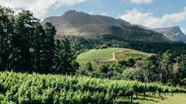 Sunday Funday: Constantia Wine Tour, Cape Town, Wine Tasting & Winery Tours