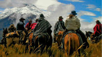 Full Day Horseback Riding in Mendoza, Mendoza, Horseback Riding