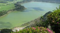 Full-Day Furnas Valley Tour Including Lunch, Ponta Delgada, Dolphin & Whale Watching