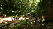 Rainforest Hike Adventure, St Lucia, 4WD, ATV & Off-Road Tours