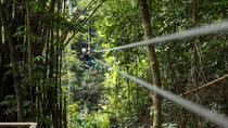 Treetop Canopy Adventure, St Lucia, 4WD, ATV & Off-Road Tours