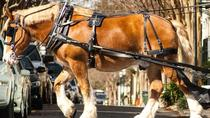 Charleston's Historic Residential Carriage Tour, Charleston, Horse Carriage Rides