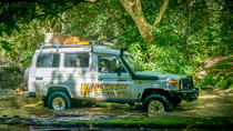 Full Day Rainforest 4WD Tour from Cairns, Cairns & the Tropical North, 4WD, ATV & Off-Road Tours