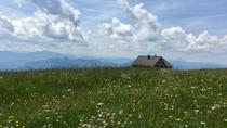 Hike Reisalpe (day-trip, 3 hrs walking time), Vienna, Hiking & Camping