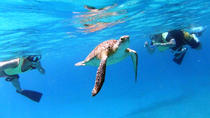 Turtle Cove Snorkel and Sail Adventure at Buck Island National Wildlife Refuge, St Thomas, ...