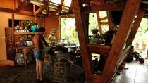 Costa Rica Campesino Farm Tour, La Fortuna, Cultural Tours