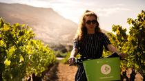 E-Bike Wein Tour zu den Weinbergen von Comte Peraldi in Ajaccio - Korsika, Ajaccio, Bike & Mountain Bike Tours