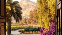Santa Rita Winery Selection Tour, Santiago, Wine Tasting & Winery Tours