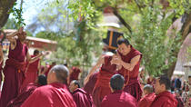 Day Tour: Tibet Drepung and Sera Monasteries, Lhasa, Cultural Tours