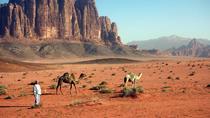 Private Wadi Rum half Day Tour From Aqaba Port (Shore Excursion Aqaba to Petra), Aqaba, Ports of...