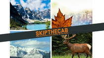 Private Departure Transfer - Banff, AB to Calgary Int'l airport (YYC) in SUVs, Banff, Airport &...