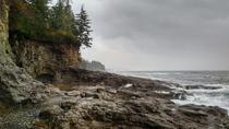 Discover Sooke to Port Renfrew, Victoria, Private Sightseeing Tours