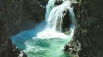 Waterfalls, Cathedral Grove Rainforest, and Coombs Private Tour with Hiking, Victoria, null