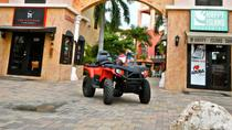 Aruba Sightseeing Tour by ATV, Aruba, Half-day Tours