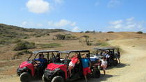 Aruba UTV Adventure, Aruba, Day Trips