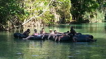 Falmouth Shore Excursion: Dunns River Falls and River Tubing Tour, Falmouth, Western Caribbean ...