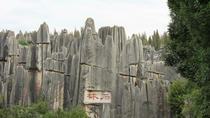 Stone Forest Private Day Tour, Kunming, Private Sightseeing Tours