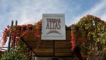 'Bodega Tierras Altas' Malbec Experience, Mendoza, Wine Tasting & Winery Tours