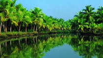 Insignia Special Kochi Shore Excursion: Backwater Houseboat Tour and Fort Kochi, Kochi, Ports of ...