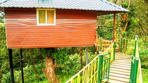 Private 4-Day Tour of Munnar Tree House and Aleppey Houseboat from Munnar, Munnar, Multi-day Tours