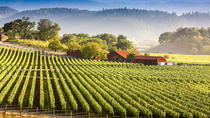 Tour Napa With An Italian Interpreter, Napa & Sonoma, Day Trips