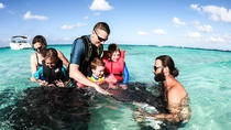 Private, luxury, custom charters to Stingray City, Snorkeling & More - Per Hour, Cayman Islands, ...