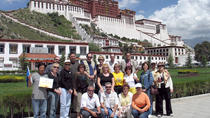 6-Day Small-Group China Tour: Lhasa to Shanghai, Lhasa, Air Tours