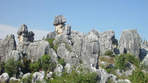 8 Days Private Tour of Kunming- Dali - Lijiang - Shangri-La, Kunming, Private Sightseeing Tours