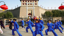 Xi'an Private Day Tour: City Wall, Great Mosque, Shaanxi History Museum and Big Wild Goose Pagoda, ...