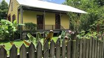 Double Plantation: Laura & Oak Alley or Whitney & Oak Alley with Transportation, New Orleans,...