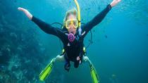 First Time Dive Experience Tour, Playa del Carmen, Scuba Diving