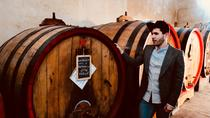 Langhe Wine Tour&Tasting with a Somm, Turin, Wine Tasting & Winery Tours