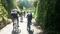 Wellington Shore Excursion: Rimutaka Rail Trail Bike Ride, Wellington, Wine Tasting & Winery Tours