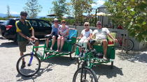 Wellington Shore Excursion: Wines of Wairarapa by Bike, Wellington, Wine Tasting & Winery Tours