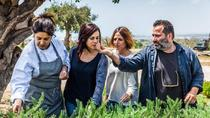 HALF DAY TOUR OF MODICA AND SCICLI WITH EXPERIENCE IN A FARM AND DINNER, Ragusa, Private...